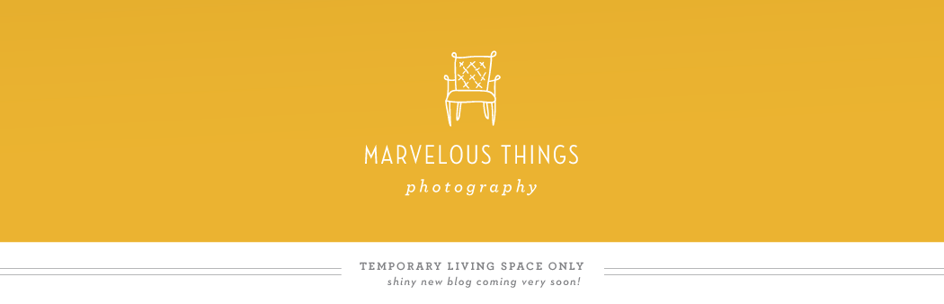 Marvelous Things Photography: The Blog