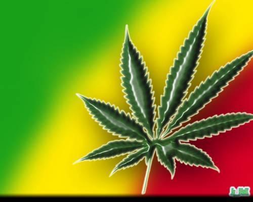 Capa Do Blog DJ Bruno Marley O Imperador Do Reggae