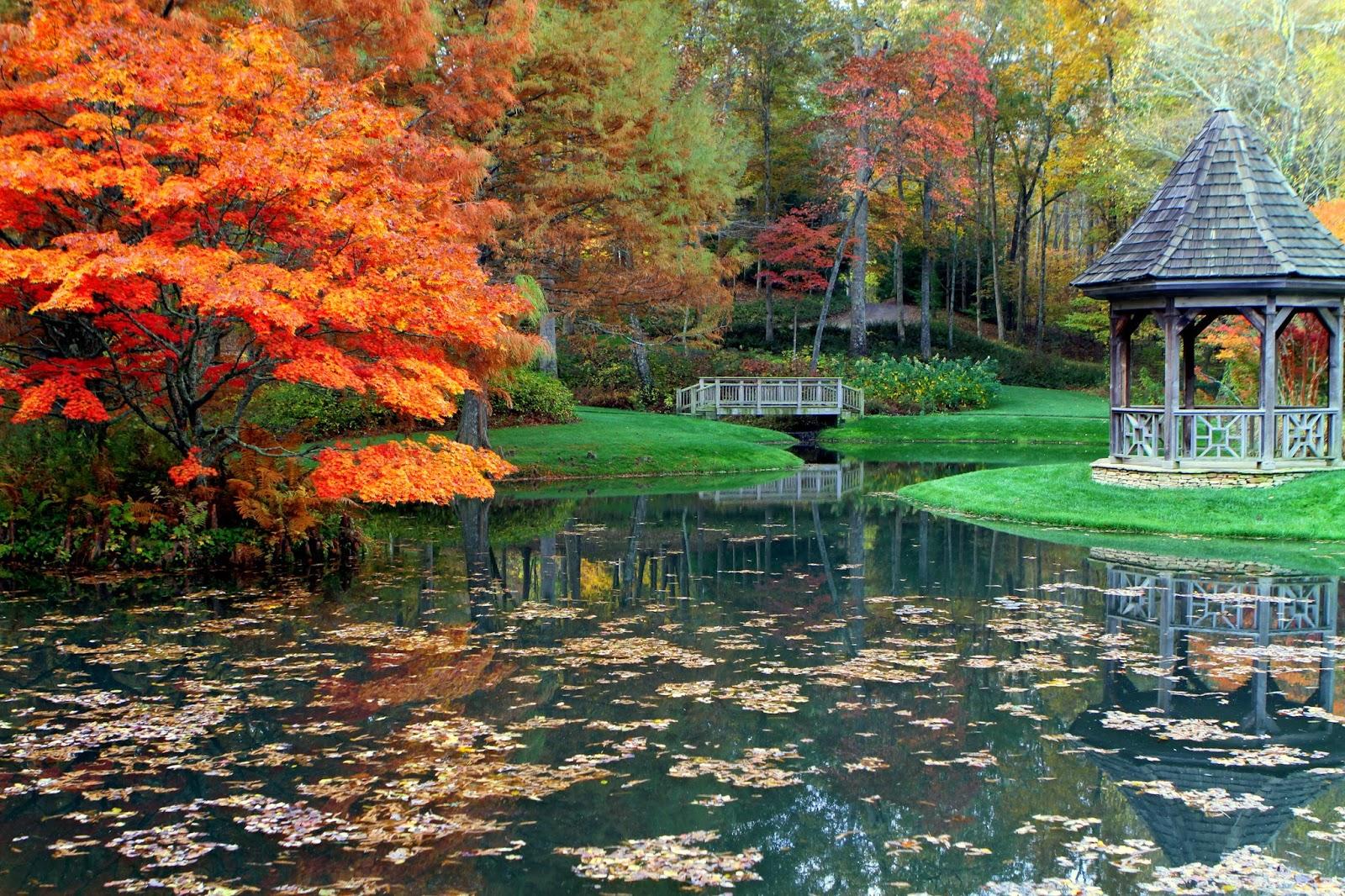 Today S Creations Gibbs Gardens In Autumn
