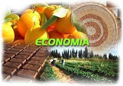 La economía como satisfactor