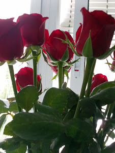 Unas Rosas  muy especiales