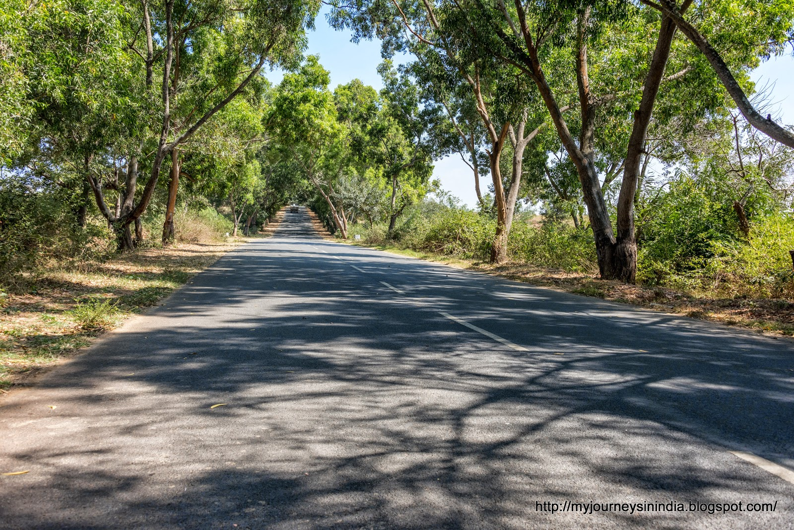 Road to Denkanikottai