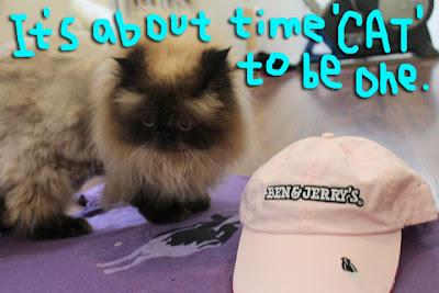 ben&Jerry's-cat03