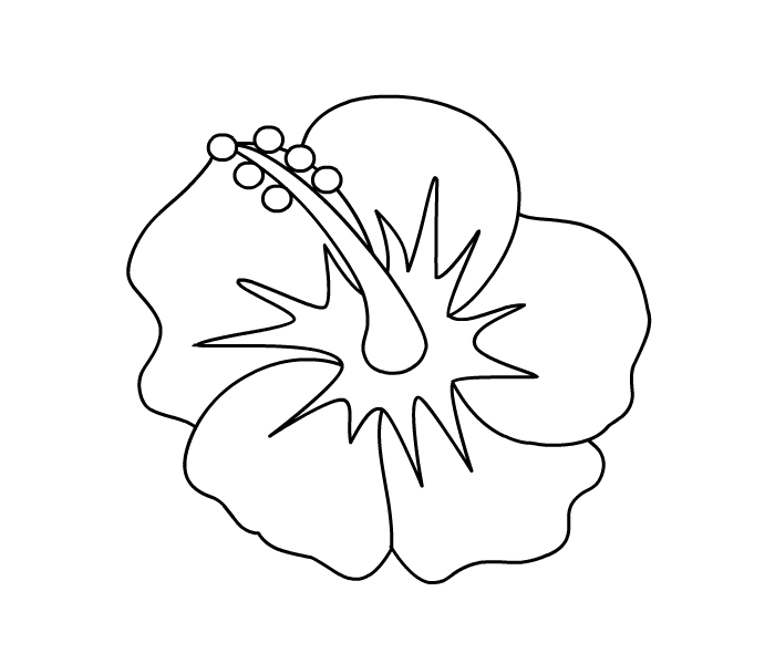 Coloring Pages Of Hibiscus Flowers : Hibiscus flower coloring pages page