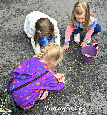 Girls picking up bird seeds