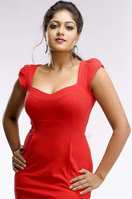 meghna raj spicy