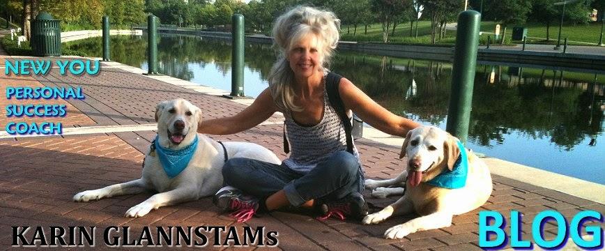 Karin Glannstam's Blog