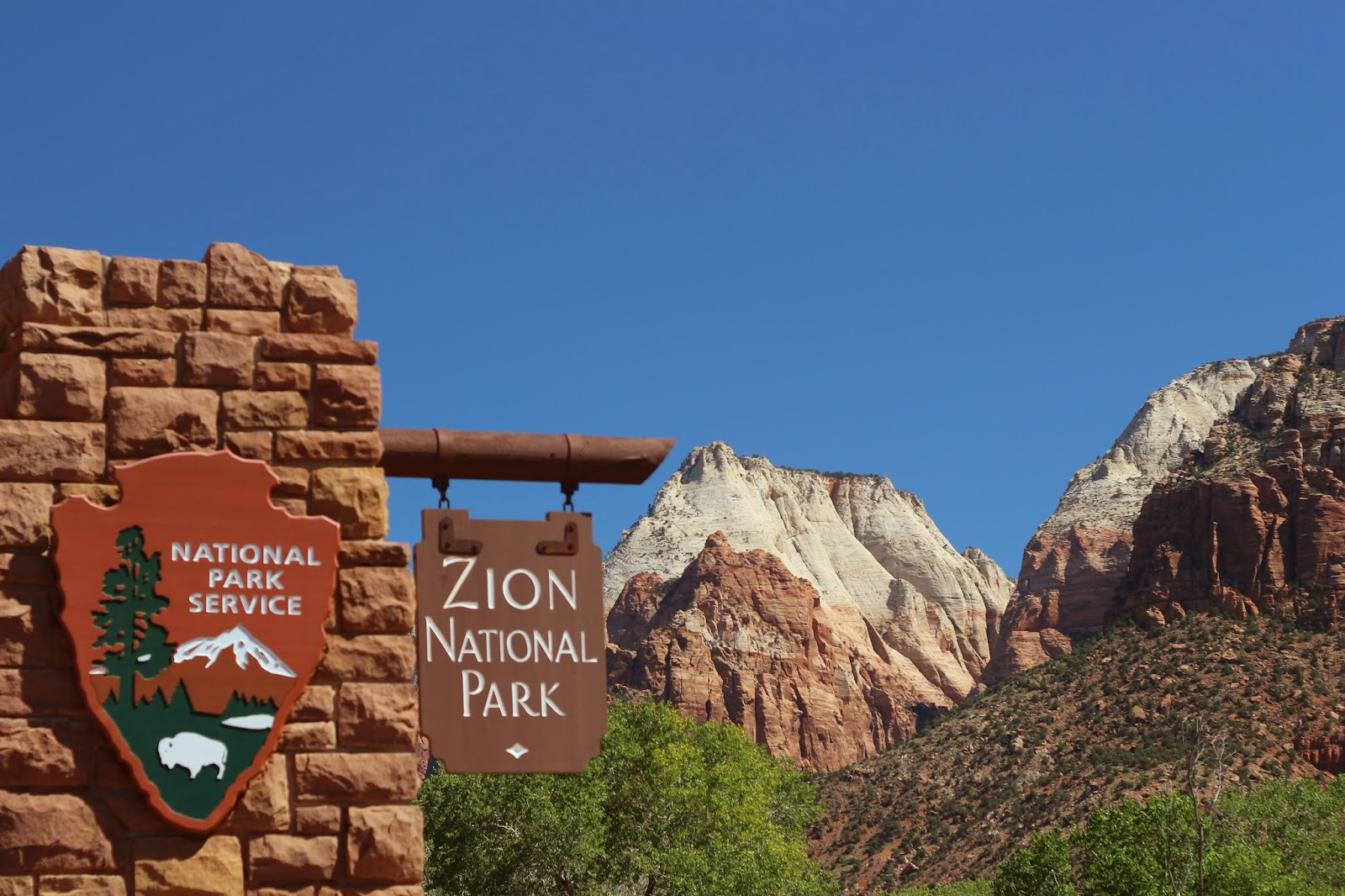 Do Cartwheels With Me Postcards From Zion National Park