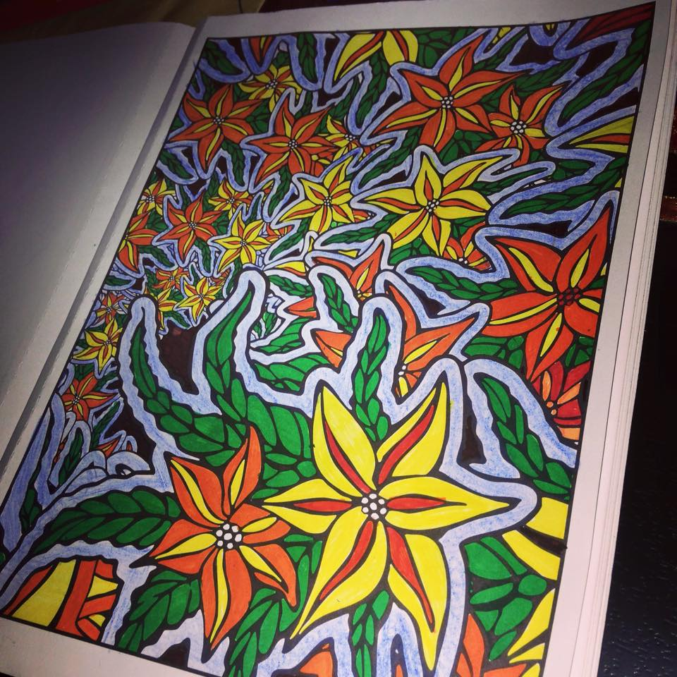 Nature Fractals By Creative Haven Work 2 I Used Faber Castell Color Pens