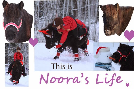 Noora's Life