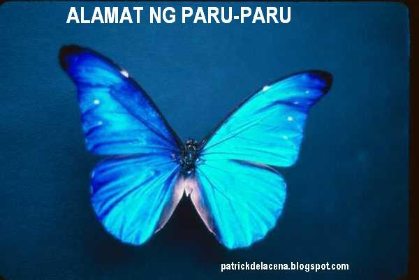 Ang Unggoy At Paru-Paro (Maikling Kuwento)