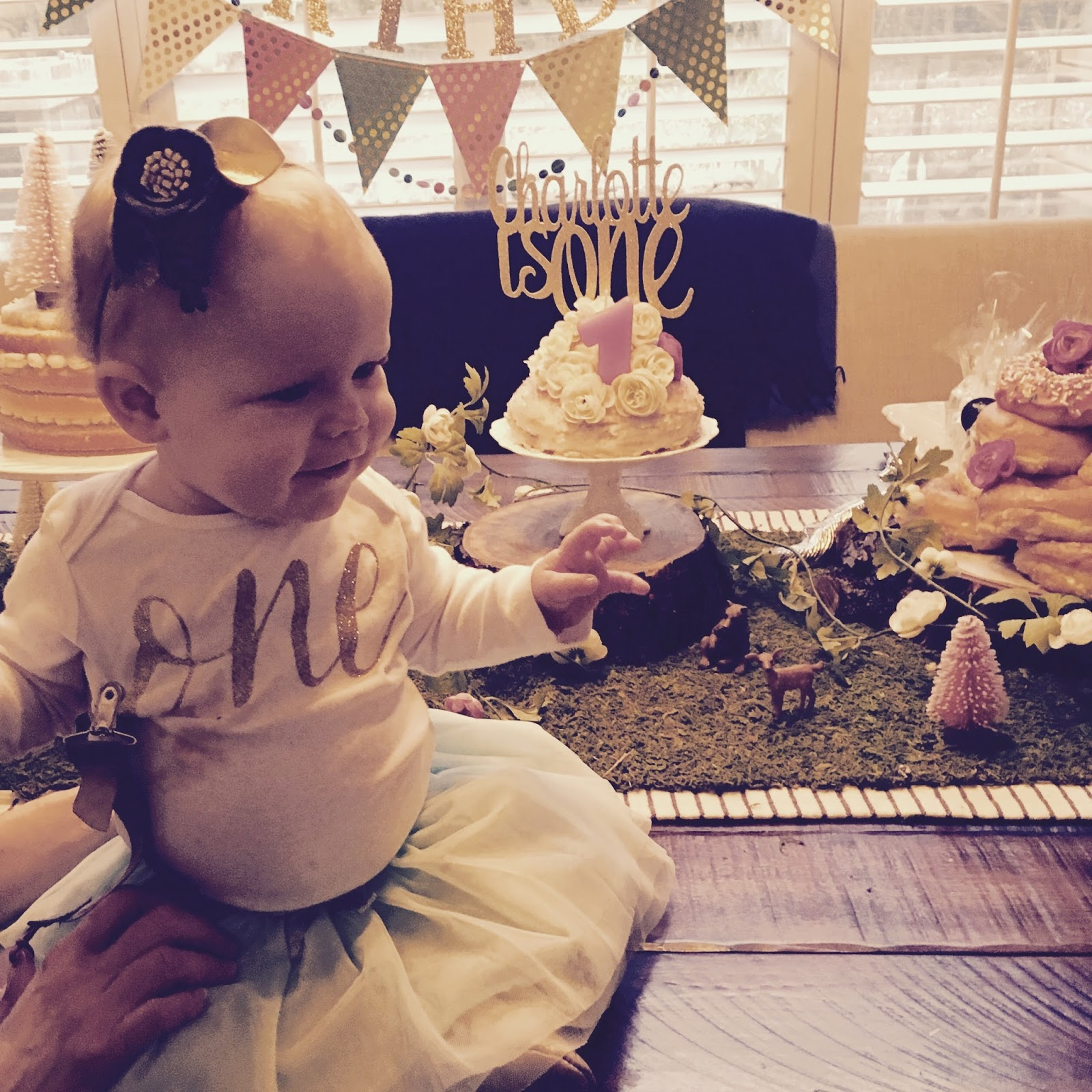 Hey Little Momma : Charlotte's First Birthday Party