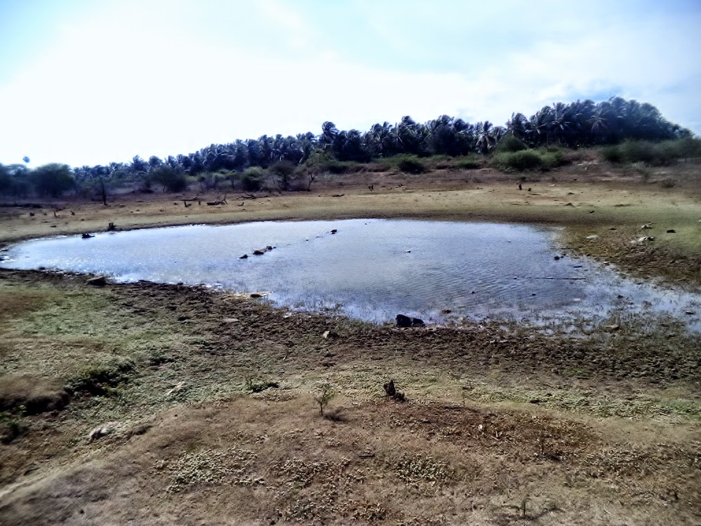 Small portion of water left in Vellalore Dam, Coimbatore