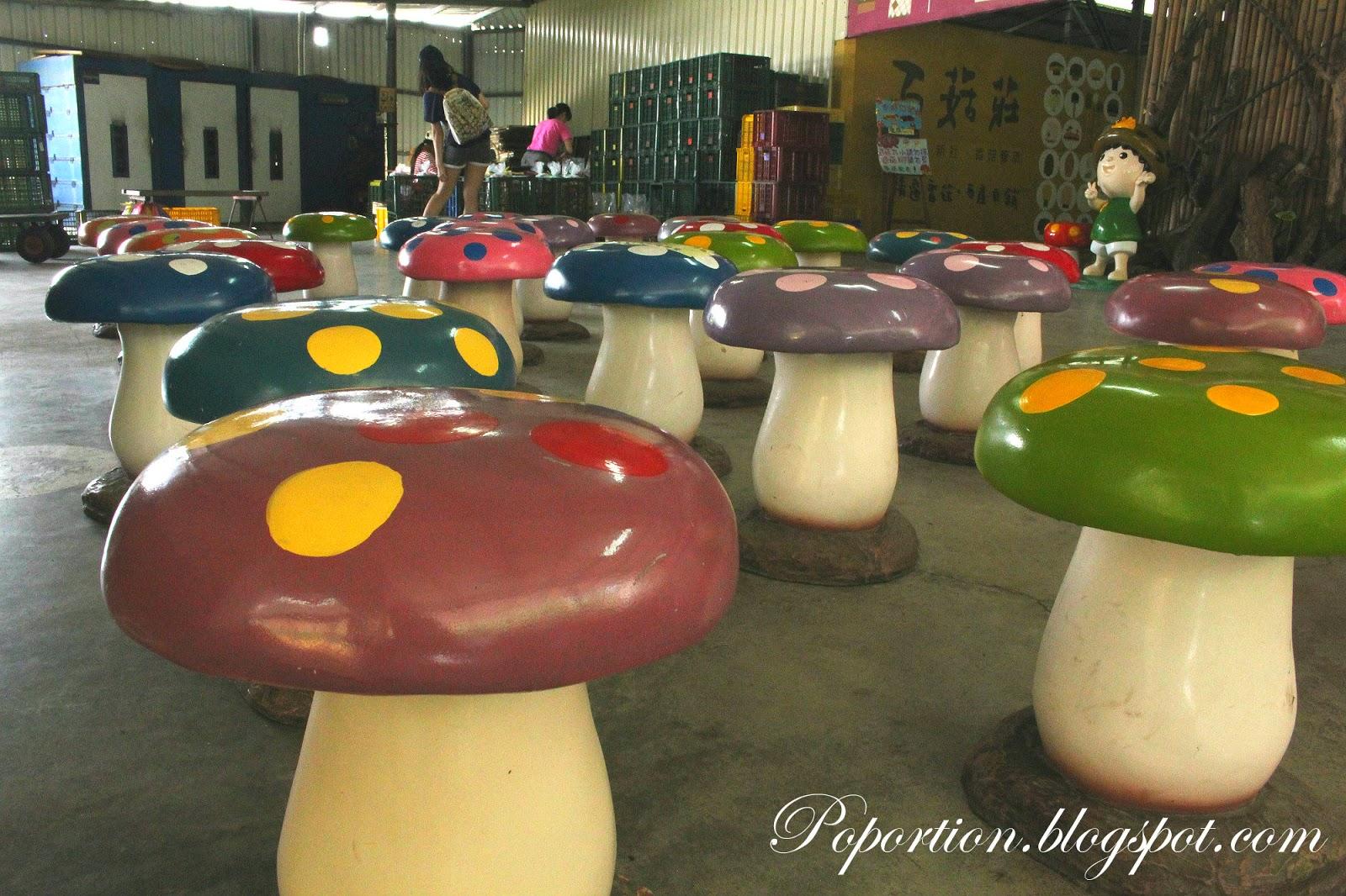 toadstools mushroom products