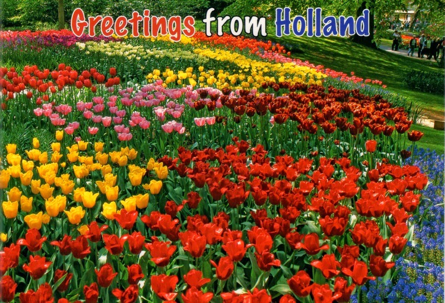 Drie appels voor nehalennia 2014 well sometimes we even add to the confusion when we send postcards with greetings from holland the pics will show the typical dutch tulips at keukenhof m4hsunfo