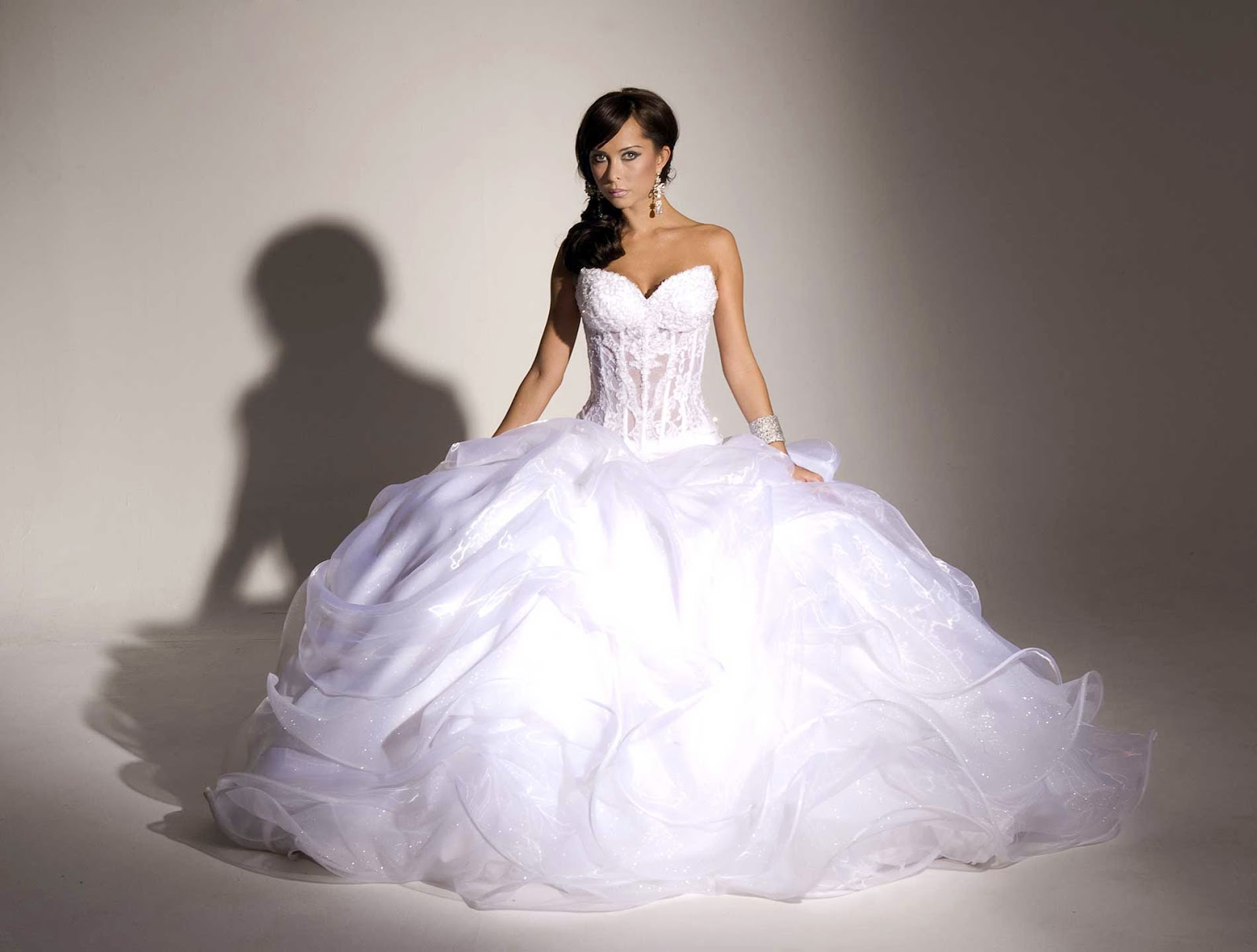 Puffy Wedding Dresses Photos Concepts Ideas