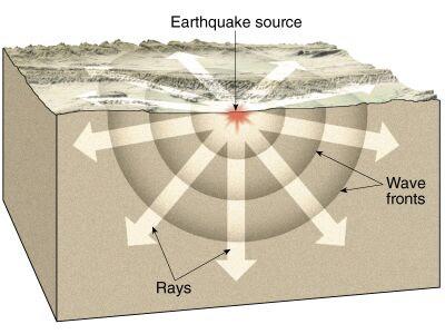Los animales pueden predecir terremotos 5