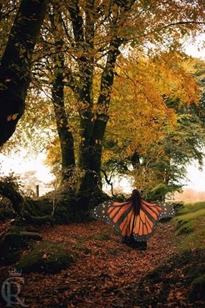 La poesía es como el viento,