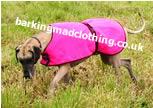 http://www.barkingmadclothing.co.uk/waterproofs2.html