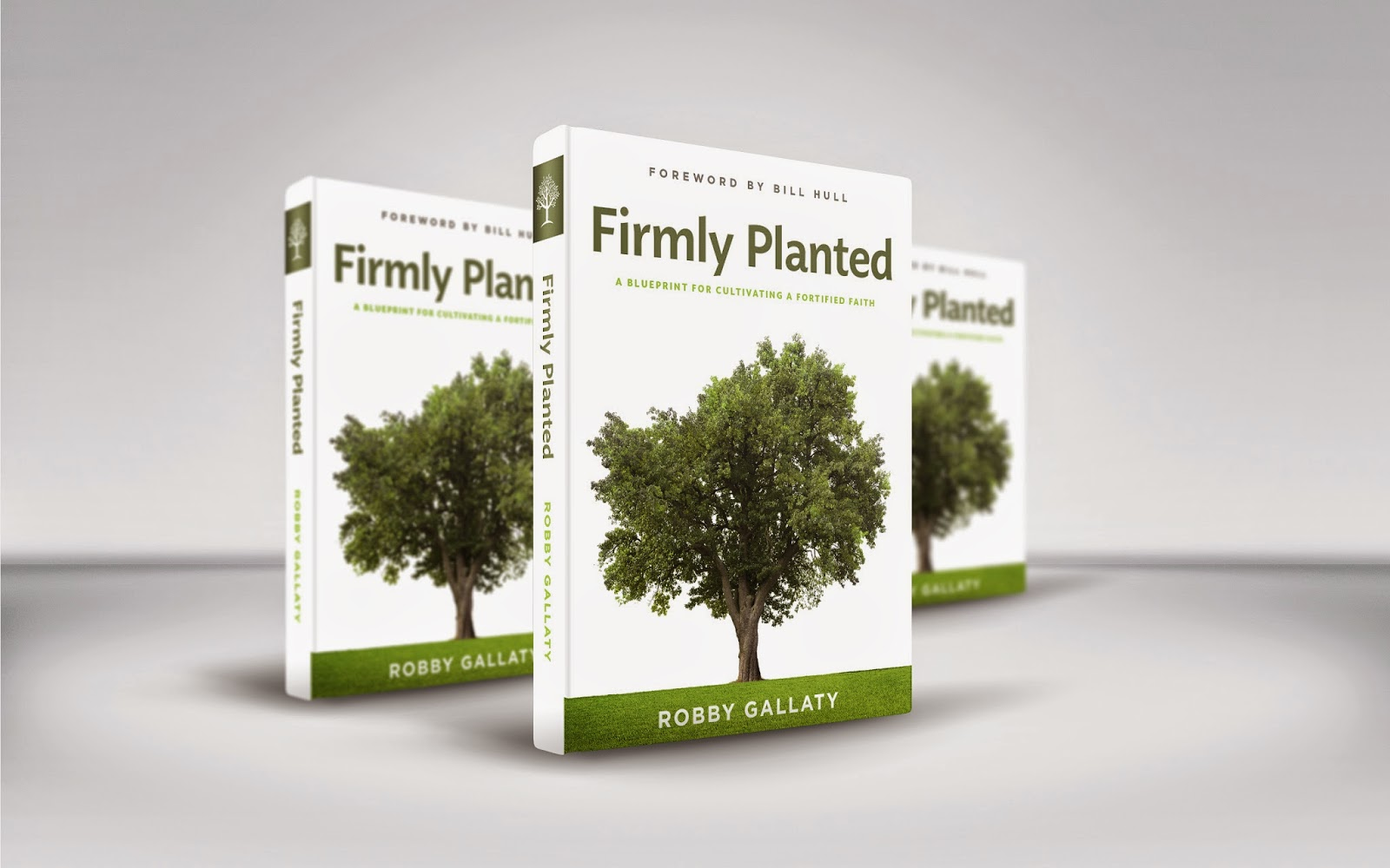 http://www.amazon.com/Firmly-Planted-Cultivate-Rooted-Christ/dp/146274592X/ref=sr_1_1?ie=UTF8&qid=1426817047&sr=8-1&keywords=firmly+planted+robby+gallaty
