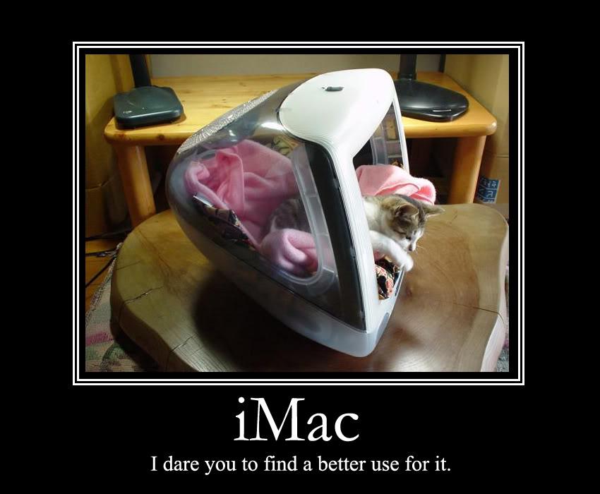 macfag-macfags-apple-ipod-imac-macbook-iphone-steve-jobs-macuser-ipad-macintosh