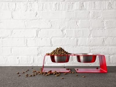 ciotole-per-cani-e-gatti-regole-consigli-e-pulizia_associazione_mammagatta