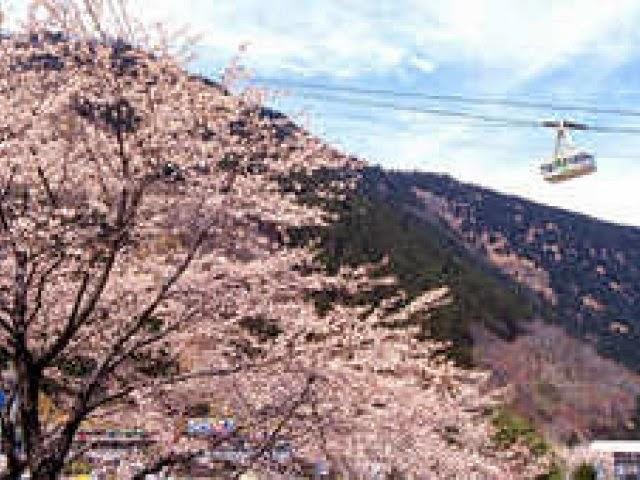 صور فى قمة الروعه لاحلى مناطق فى اليابان