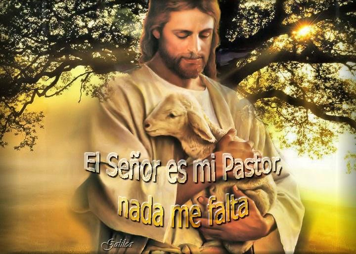 Resultado de imagen de imágenes del buen pastor