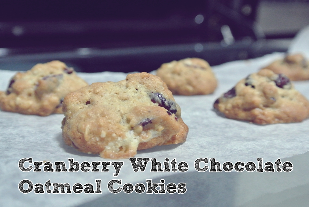 Cranberry White Chocolate Oatmeal Cookies - The Fatty Rie