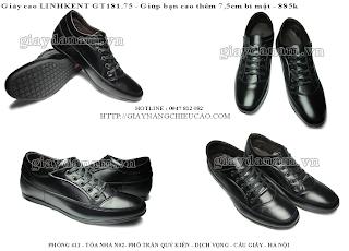 Giày tăng chiều cao GT181. 75