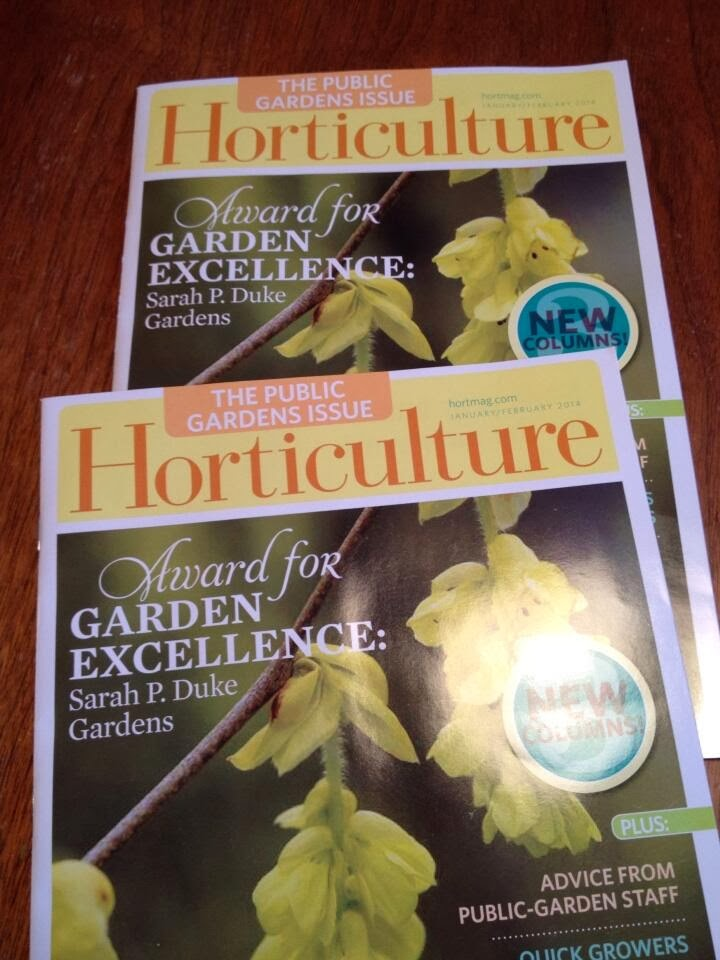 Check out my new column in Horticulture magazine!