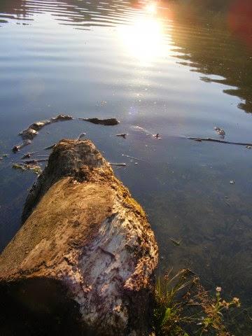 Tips menghasilkan foto sunrise dengan smartphone