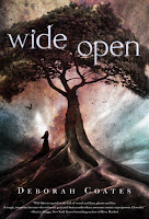 Book cover of Wide Open by Deborah Coates