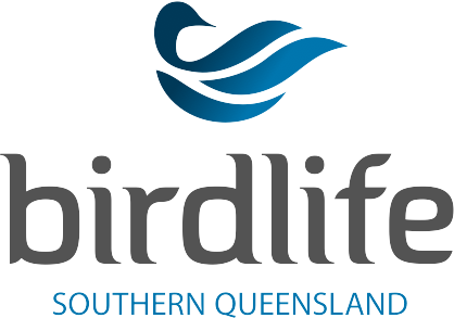 Sunshine Coast Birdlife Australia Blog