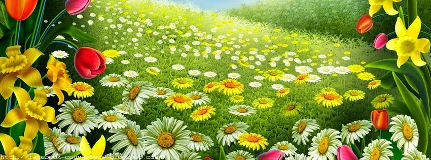 Couverture facebook paysage de printemps