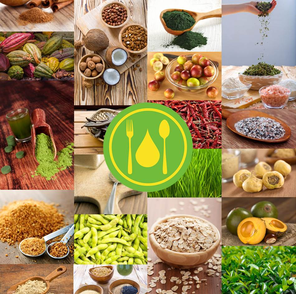 Ingredience v AnaPuru