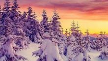 En invierno...