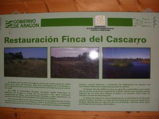 Cartel Balsa del Carrasco
