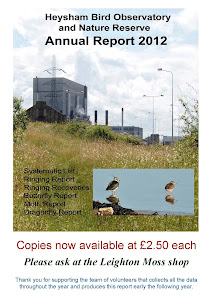 2012 Heysham Obs report available now