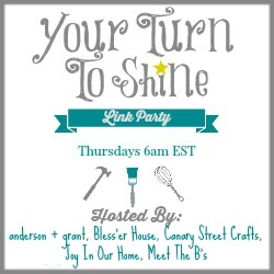 Your Turn To Shine link party button