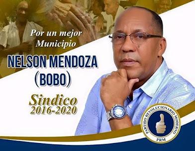 NELSON MENDOZA (BOBO) SINDICO 2016-2020