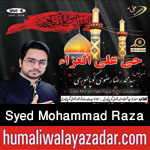 http://www.humaliwalayazadar.com/2015/10/syed-mohammad-raza-rizvi-nohay-2016.html