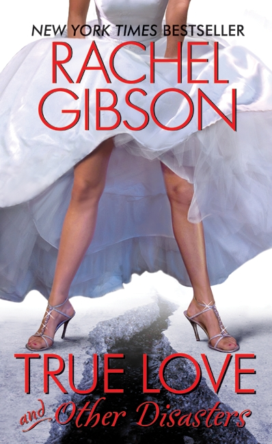 Ao Ler O Livro: True Love And Other Disasters - Rachel Gibson