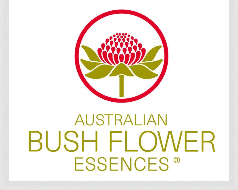 Austalian Bush flower