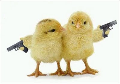 Chicks Have Gun