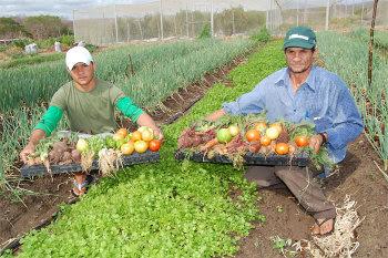 Brasil: Movimento camponês reivindica políticas públicas para agricultura