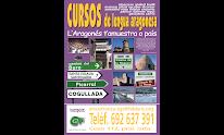 Cursos        d'aragonés 2014/15