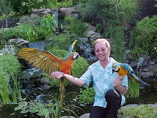 http://2.bp.blogspot.com/-O3YBXZA-cQQ/UCvbUbM2KGI/AAAAAAAAAOc/7FX3o_cel5Y/s1600/waterfall+with+that+bird+guy.jpg