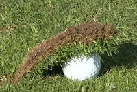 golf ball divot