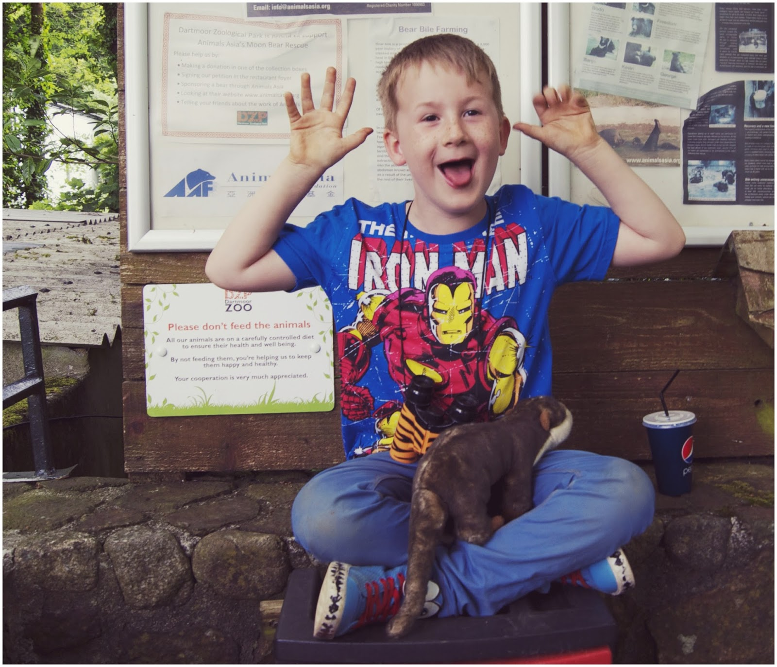 dartmoor zoo, bears, childhood, fun, lol, living arrows, photo, blogger, plymouth bloggers,